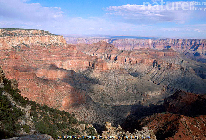 Grand canyon from North Rim Arizona USA, LANDSCAPES,RESERVE,NORTH AMERICA,LANDMARK,ROCK,ROCK FORMATIONS,FORMATIONS,GEOLOGY,USA, Georgette Douwma