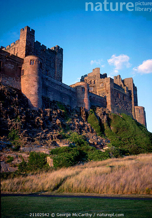 Bamburgh castle Northumberland UK, COASTS,LANDSCAPES,EUROPE,BUILDINGS ,CASTLES,ENGLAND, George McCarthy