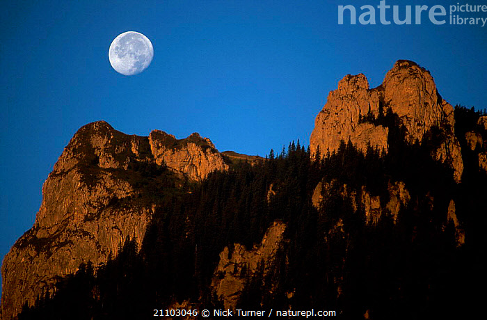 Moonset at dawn over Carpathian Mountains Romania 08/99, MORNING,MOUNTAIN,CALM,EARLY,SKY,LANDSCAPES,MOONLIT,PEACEFUL,MOON,CONCEPTS,EUROPE, Nick Turner