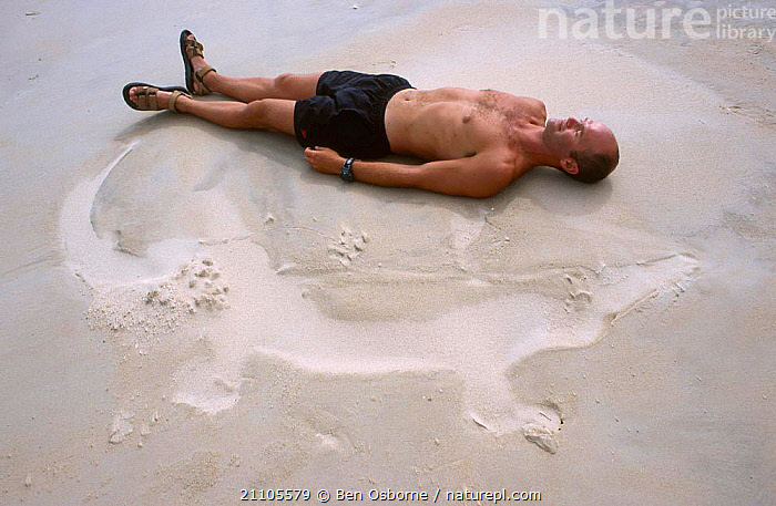 Simon King lying beside sand imprint of Saltwater crocodile while on location filming for BBC Blue Planet series, 2002,  Crab Is. Queensland, Australia, COASTS,PATTERNS,SIZE,PEOPLE,REPTILES,BACK,BEACHES,HUMOROUS,BLUE PLANET,CONCEPTS, Ben Osborne