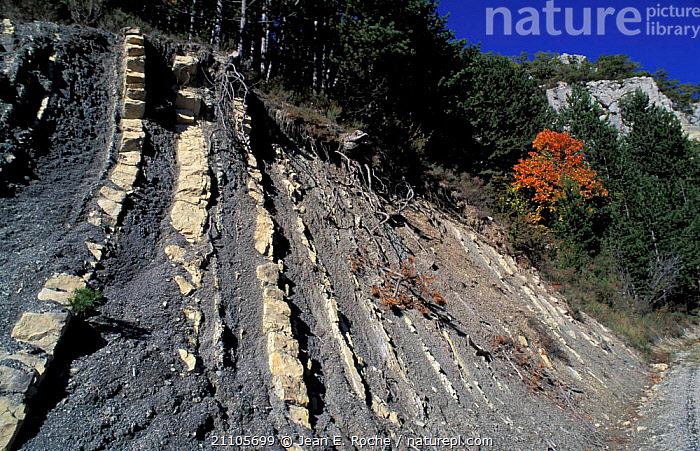 Black marl deposits Baronnies Provence France, ROCKS,ROCK FORMATIONS,LANDSCAPES,SCREE,GEOLOGY,Europe, Jean E. Roche