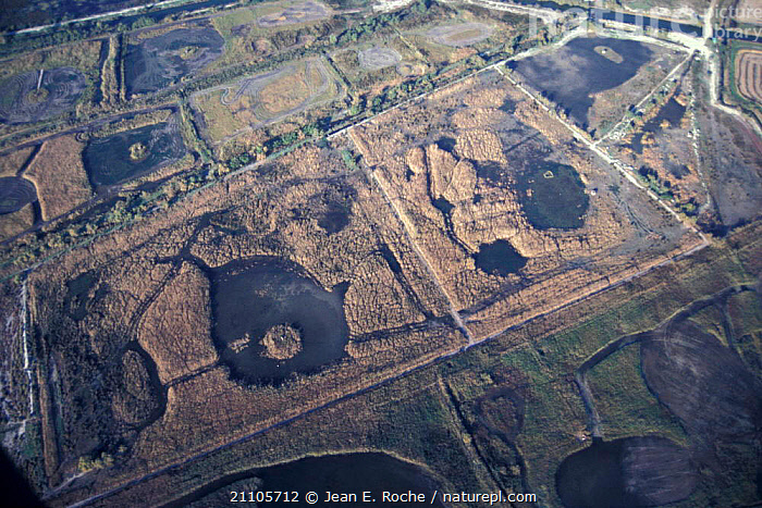 Aerial view of Camargue area managed for hunting France, WETLANDS,COASTS,LANDSCAPES,HUNTING SPORT,TRADITIONAL ,AERIALS,Europe, Jean E. Roche