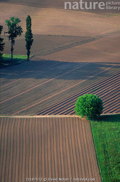 Aerial view of cultivated farmland Dordogne France  ,  CROPS,AGRICULTURE,LANDSCAPES,VALLEY ,AERIALS,Europe  ,  David Noton