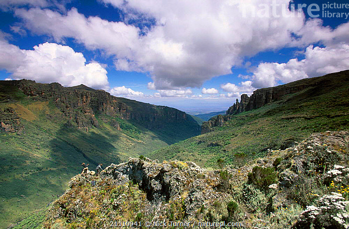 Climbers on Suam gorge Mt Elgon NP Kenya  ,  AFRICA,CRATER,RESERVE,EXTINCT,MOUNT,LANDSCAPES,VOLCANOES,SUMMIT,PEOPLE,HIKERS,HIKING,GEOLOGY,EAST-AFRICA  ,  Nick Turner