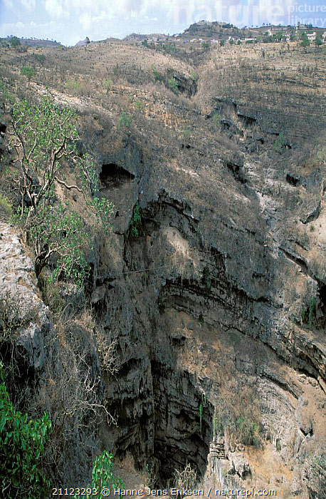 Tawi Atayr, good place for watching birds, Dhofar, Oman  ,  VALLEY,LANDSCAPES,PLACES,SCENICS,VALLEYS,ROCK FORMATIONS,ROCK,ROCKS,Geology,ARABIA  ,  Hanne Jens Eriksen