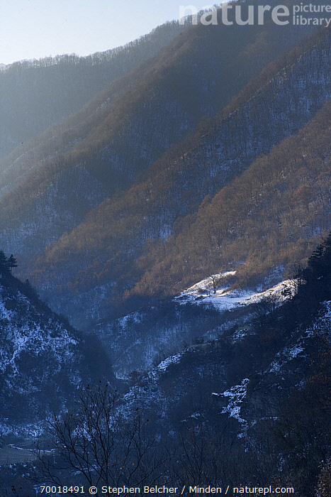 Valley in the Qinling Mountains, China  ,  China, Color Image, Day, Hillside, Landscape, Mountain, Nobody, Outdoors, Photography, Qinling Mountains, Snow, Valley, Vertical,China  ,  Stephen Belcher