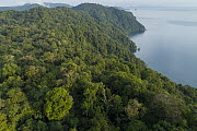 Mountains along lake with choco rainforest, Utria National Park, Colombia - Chien Lee