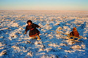 Nenets boy pulling younger child on a sled. Yamal, Western Siberia, Russia, 2001.  -  Bryan and Cherry Alexander