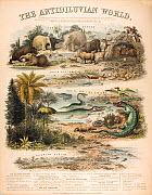 A rare British broadsheet illustration with contemporary hand colouring, drawn and engraved by John Emslie and published by James Reynolds in 1849. It shows reconstructions of extinct creatures in the...  -  Paul D Stewart