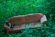 Sofa dumped in Black Forest, Baden-Wurttemberg, Germany. May.  -  Klaus Echle