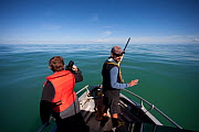 Abundance survey of the Critically Endangered Maui's dolphin (Cephalorhynchus hectori maui) conducted by the New Zealand Department of Conservation. Marine ranger Martin Stanley takes photographs of t... - Richard Robinson