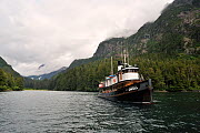 The Nautilus Swell, a former tug built in 1912 which has been completely refitted and is now a liveaboard dive boat in a bay of Alexander Archipelago. Gulf of Alaska, Pacific Ocean. All non-editorial...  -  Pascal Kobeh