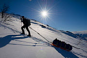 Woman pulling a sledge up a slope, Rapadalen, Sarek National Park, Laponia, Sweden, March 2015.  -  Erlend Haarberg