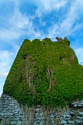 Ballycarbery Castle, Caherciveen, Ring of Kerry, County Kerry, Ireland, Europe. September 2015. - Juan  Carlos Munoz