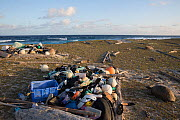 Marine litter - mostly shoes  flip flops) and plastic bottles washed up on shore with Aldabra giant tortoise (Aldabrachelys gigantea). Cinq Cases, Aldabra Island, Indian Ocean  -  Huw Cordey