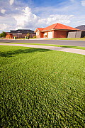 Plastic grass lawn outside new houses in Echuca,  Victoria, These were installed during a drought which lasted from 1996-2011. Australia. February 2010.  -  Ashley Cooper
