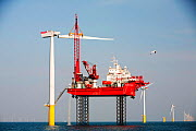 The Krakken, a jack up barge, constructing wind turbines of the Walney offshore wind farm, uses a specialist cradle to lift a turbine blade into place. Cumbria, England, UK. September 2011 - Ashley Cooper