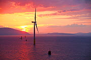 The Walney offshore windfarm at sunrise, Barrow in Furness, Cumbria, UK. July 2011. - Ashley Cooper
