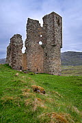 Tourists visiting 16th century Ardvreck Castle ruin at Loch Assynt in the Scottish Highlands, Sutherland, Scotland, UK, May 2017 - Philippe Clement