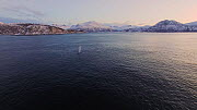 Aerial shot of two Humpback whales (Megaptera novaeangliae) coming to the surface to breathe, Sommaroy, Troms, Norway, January. - Espen Bergersen