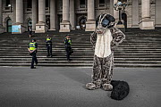 ?A protester dressed as a Greater glider (Petauroides volans) from GECO (Goongerah Environment Centre Office) protesting against logging in East Gippsland on the steps of the Victorian Parliament, Mel...  -  Doug Gimesy
