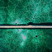 Service road crossing an abandoned pond used for the disposal and stacking of phosphogypsum with crystallised patterns and shallow, but highly toxic radioactive green water in Huelva, Southern Spain....  -  Milan Radisics