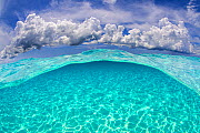Light patterns on the seabed and fluffy cumulus clouds in the sky in a split level image. North Sound, Grand Cayman, Cayman Islands, British West Indies. Caribbean Sea. - Alex Mustard