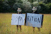 """Two people wearing wolf masks holding up a sign """"Disappearance"""" to highlight the loss of biodiversity, Envies Rhônements, Camargue, France. June 2018.  -  Jean E. Roche"""