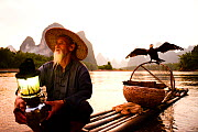 Traditional Chinese fisherman on raft with domesticated Cormorant (Phalacrocorax carbo sinensis) drying wings, birds used to catch fish, Karst peaks in background. Li River, Yangshuo, Guanxi, China. 2...  -  Enrique Lopez-Tapia