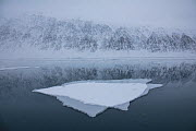 RF - Double exposure shot of sheet of ice on Greenland Sea with snow covered mountains in background. Krossfjorden, Svalbard, Norway. April 2018. (This image may be licensed either as rights managed o...  -  Pal Hermansen